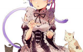 猫咪与女孩比哪个更招人爱?少女与猫咪特辑